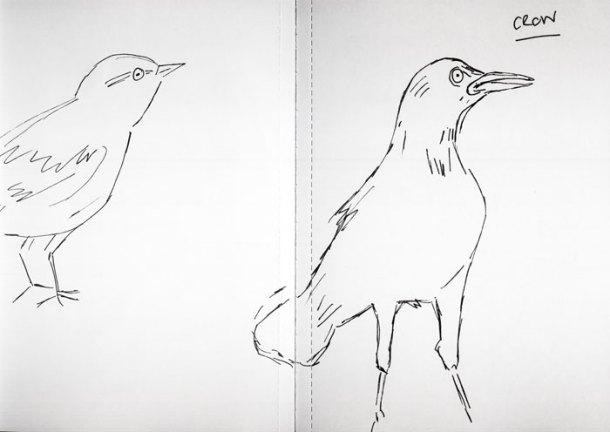 Sketchbook birds 1