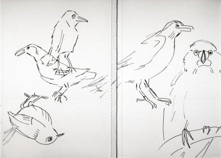 Sketchbook birds 4