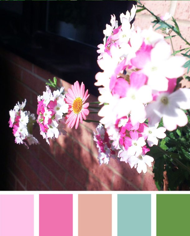 colour-palette-7
