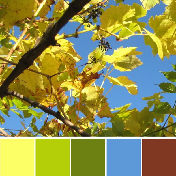 yellow-leaves-colour-palette